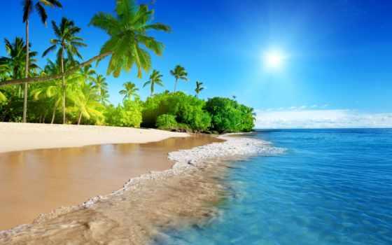 угол, рай, моря, rum, gosling, баста, black, тюлень, пляж, angym, берегу,