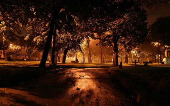 park, вечер, город, осень, скамейка, свет, trees, фонари, трек, природа, ночь,
