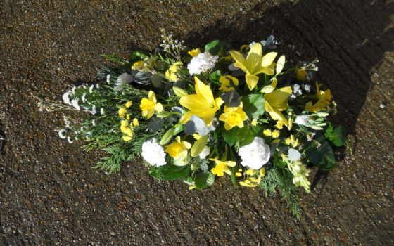 цветы, букеты, лилии
