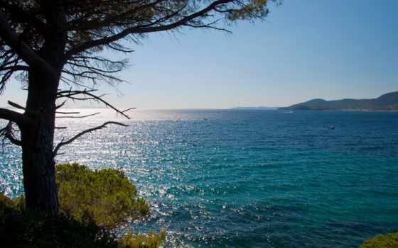 море, french, берег, природа, горизонт, дерево, azure, побережье, франции, солнечно,