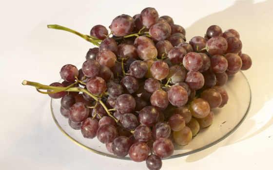 виноград, fruits, зооклубе, природа, плоды, zooclub, картинка, фрукты, дикие, zhivotnye,