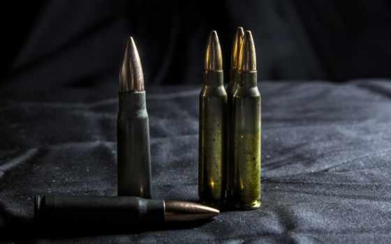 desktop, ammunition, animals, guns, ammo, high,