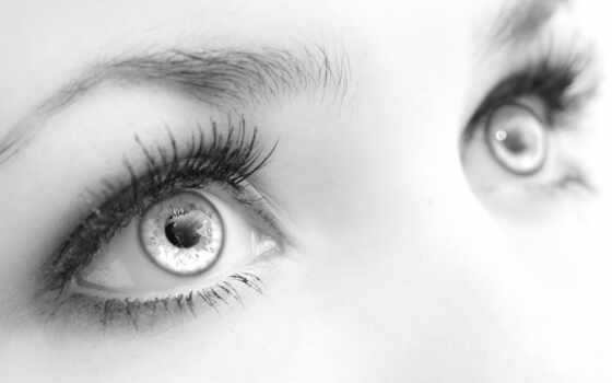 глаз, цитата