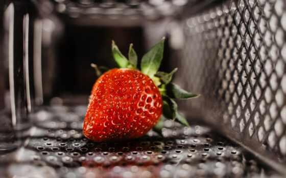 клубника, красивый, ягода, free, meal, фото, stokovyi, red, daily, дождь