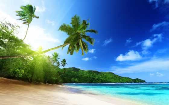 seychelles, сейшельские, острова, туры, остров, ночей, острове, тур, rub, сейшельских, пляж,