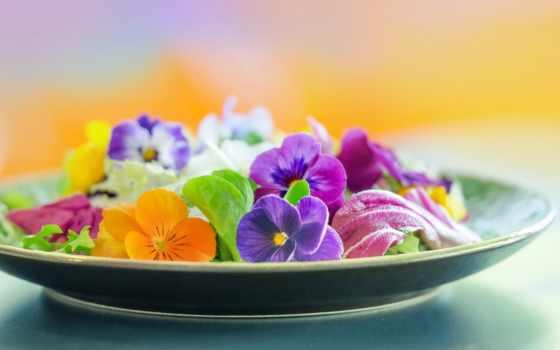 доброе, утро, cvety, утра, доброго, есть, hicks, world, many, пожаловать,