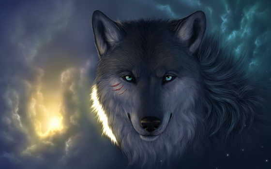 волки, волк, качественные, предпросмотром, волков, лисы,