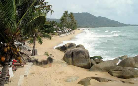 пляж, tropical, desktop
