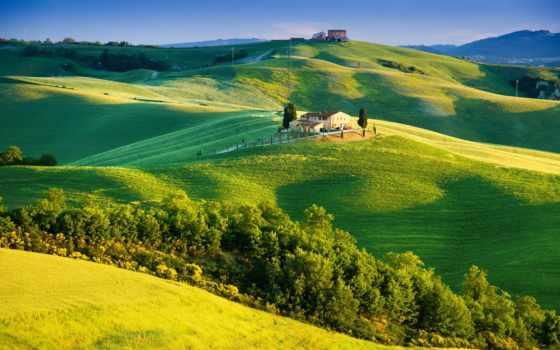 tuscany, italy, trees, summer, countryside, купить, солнечный, свет,