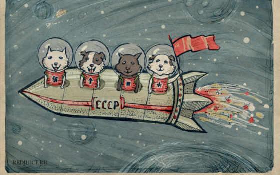 стрелок, белки, cosmos, хаски, собаки, за, strelka, белка, ссср, вслед, космос,
