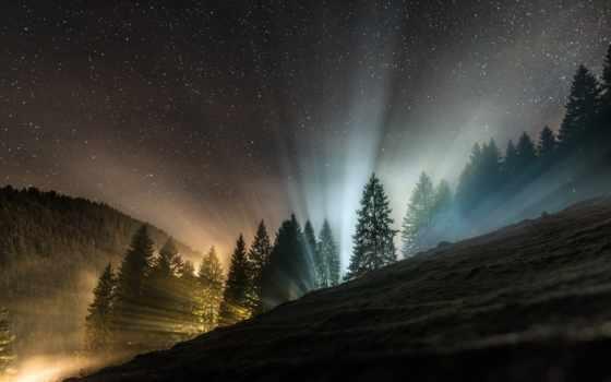 stars, ночь, небо, лес, star, об, pinterest, more, see,