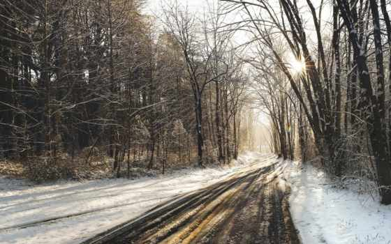дорога, winter, лес, снег, лесу, заснеженный, trees, снегу, зимняя, пейзажи -, солнечный,