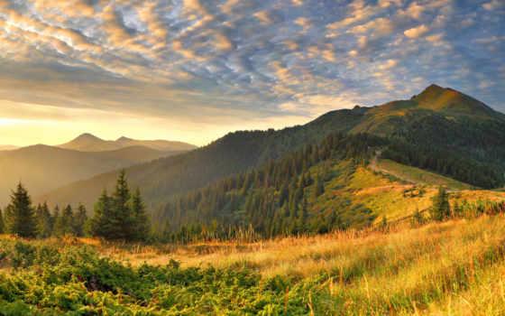 красивые, пейзажи, природа