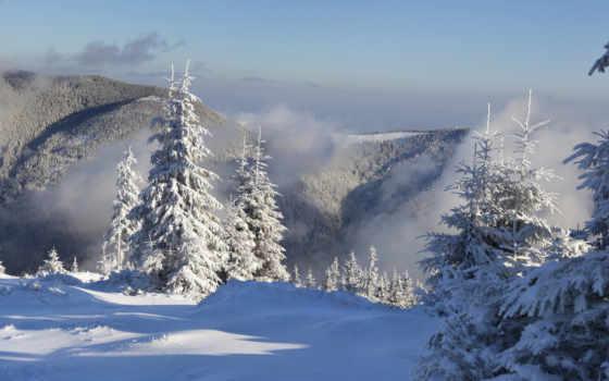 снег, туман, горы, елки, winter, природа, лес, категории,