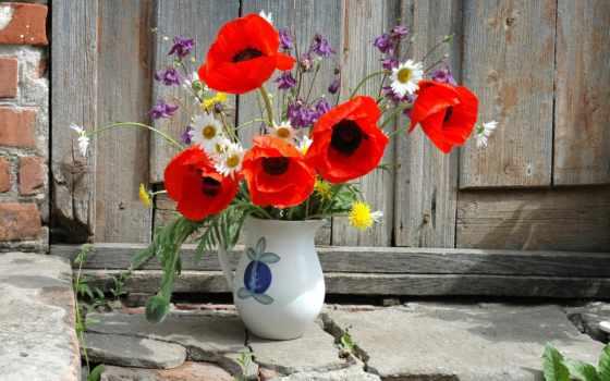 букет, маки, цветы