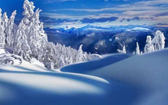 winter, снег, снежная