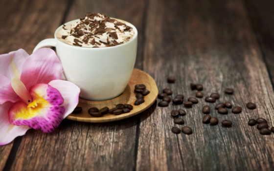 coffee, зерна, напиток, cup, пенка, chocolate, cappuccino,