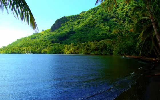 summer, море, пляж, tropics, moorea, остров,