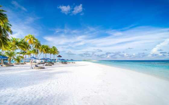мальдив, maldive, остров, ocean, resort, дерево, природа, небо, blue, palm, пляж
