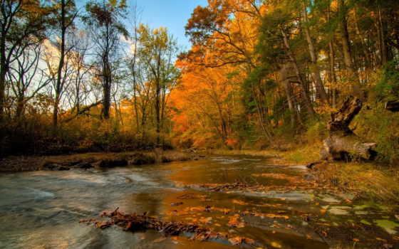 пейзажи -, высокого, качества, фона, озера, реки, коллекции,