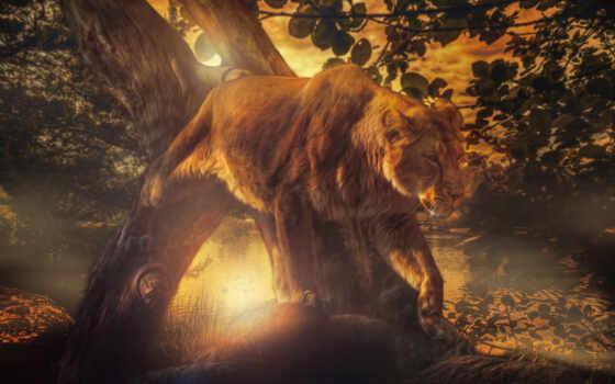 лев, львица, kot, дерево, fon, razreshenie, хорошії, узкий, загрузить, кошка, лежат