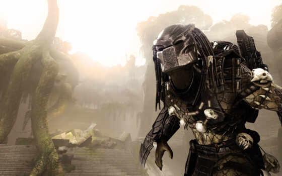 predator, aliens Фон № 23006 разрешение 1920x1080
