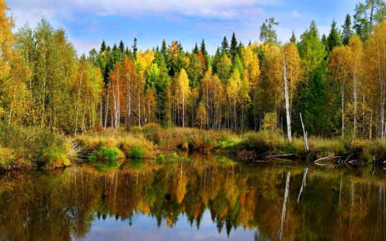 осенние, пейзажи, осень