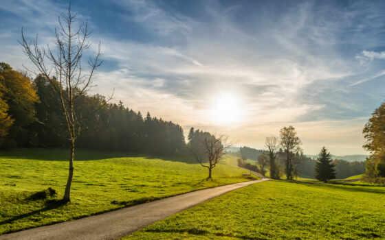 дерево, природа, рассвет, закат, weed, небо, дорогой, landscape, трава, облако, фото