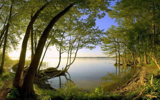 природа, виды, trees, windows, les, природы, bolgenos, озеро, красивые, лес,