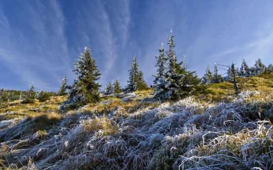winter, картинку, иней, youtube, aeminpu, ответы, eli, кота, поле, landscape,
