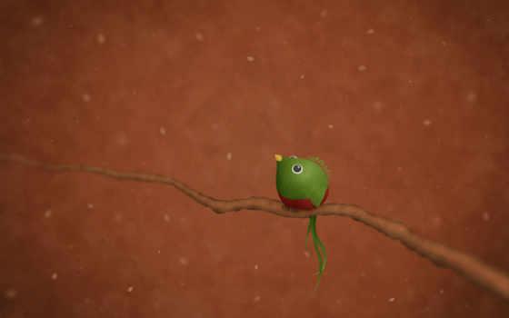 ubuntu, quetzal, птица, que, арт, já, ветка, кетцаль, лепестки, confira, vladstudio,