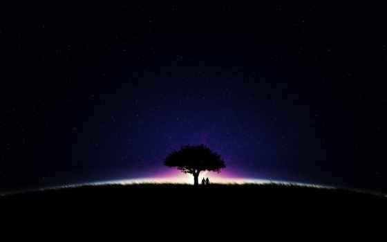 ipad, free, дерево, ночь, луна, метеор, caolan, pinterest,