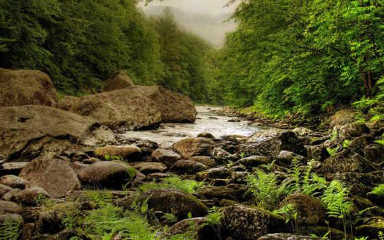 nature, речка