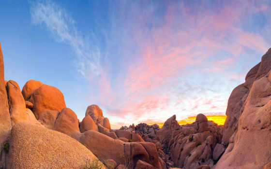 навин, дерево, national, park, california, usa, boulders, granite,