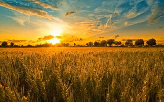 ночь, году, июня, день, праздник, летнее, летнего, solstice, солнцестояния,