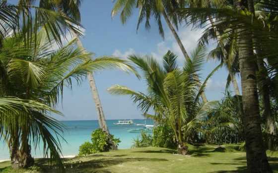 пальмы, flickr, пейзажи -, море, лодки, rai, don,