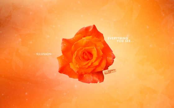 абстракция, цветы, оранжевый