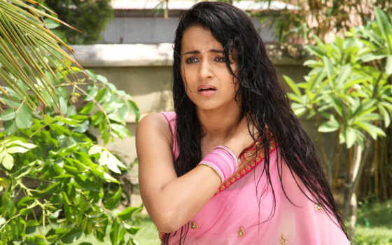 trisha, hot, aranmanai, photos, saree, krishnan, розовый, актриса, wet,