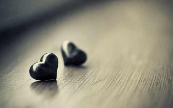 сердце, макро Фон № 9335 разрешение 2560x1600