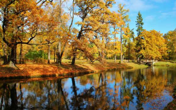 осень, царское, park, деревня, листва, tapety, trees, sun, reki, парки,