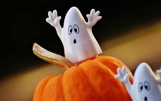 halloween, cookie, праздник, browse, тыква, белки,