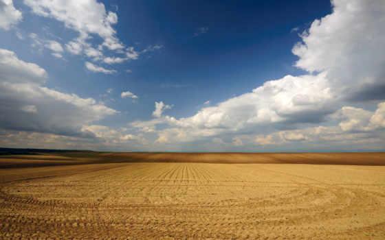 поле, широкоформатные
