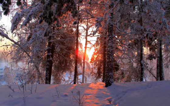 зима, природа, времена