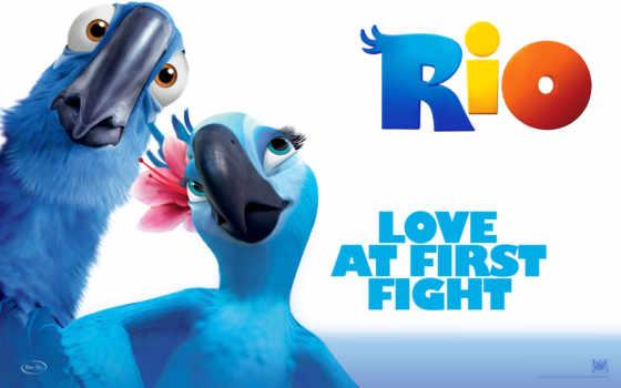 rio, movie, was