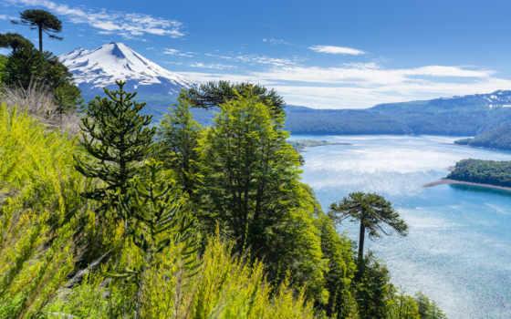 chile, парки, park, природа, landscape, горы, trees, national, reki, изображение, conguillio,