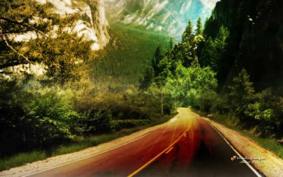сервис, телефон, книга, smartphone, лес, дорога, fauna, mobile, подпись, ремонт,