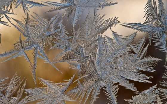 glass, pattern, icing, сток, палуба, winter, день, иней, коллекция