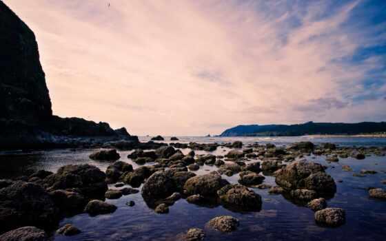 корабль, ноутбук, море, пляж, окно, cannon, побережье, камень, осьминог, фотоколлаж, гаджет