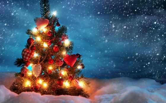christmas, tree