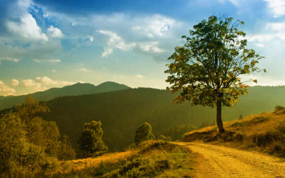 дорога, горы